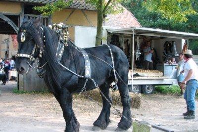 Das Pferd ist dem Rückewagen gewichen.