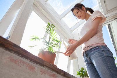 Spiegelfolien bei Wintergärten auftragen - ein guter Sonnenschutz