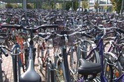 Ein Fahrrad abolen zu lassen, ist dank moderner Versandunternehmen ein Kinderspiel.