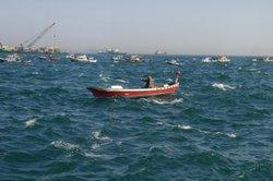 Vom Boot aus können Sie Dorsche am besten angeln.