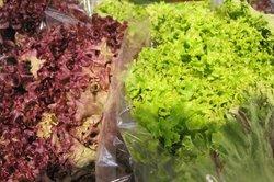Zu jedem Salat gehört ein leckeres Dressing.