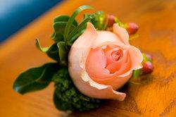 Von der Schönheit der Rose profitieren!