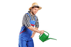 Üben Sie den Einstellungstest, wenn Sie Gärtner werden wollen.