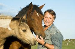 Pferde können mit alternativen Methoden behandelt werden.