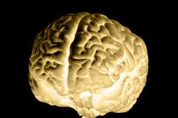 Beim Test zeigen Sie, was in Ihrem Gehirn steckt.