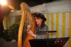 Als Selbstlerner Harfe spielen lernen