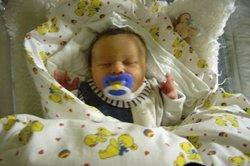 Babys Schnuller sind an einem Schnullerbrett bestens aufgehoben.