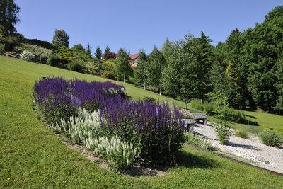 Auf einem Hügelbeet können Sie sowohl Gemüse, als auch Blumen anbauen.