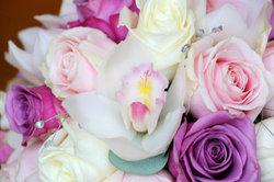 Bei richtiger Standortwahl und Pflege gedeihen Ihre Rosen prächtig.