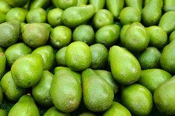 Avocados - richtig gelagert schimmeln sie nicht.