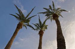 Spanien ist ein beliebtes Urlaubsland.