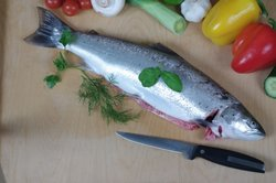 Frischer Fisch ist gesund.