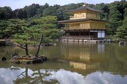 Starten Sie Shogun 2 und tauchen Sie in die japanische Welt ein.