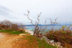Istrien - ein beliebtes Reiseziel in Kroatien