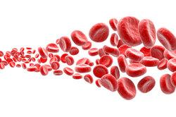 Ein Erythrozyt braucht genügend Hämoglobin.
