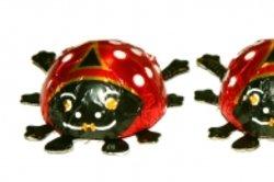 Glückskäfer sind aus fructosefreier Schokolade.