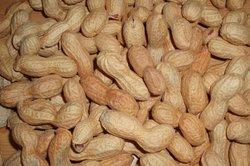 Erdnüsse enthalten auch Kohlenhydrate.