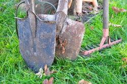 Spaten und Co. lassen Gärtnerherzen höher schlagen.
