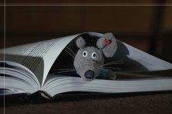 Aus grauer Wolle können Sie eine süße Woll-Maus basteln.