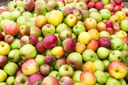 Diverse Apfelsorten eignen sich für unterschiedliche Zubereitungen.