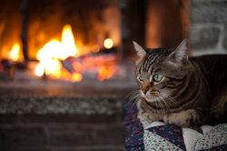 Gemütlich und sicher ist das Feuer nur, wenn Sie das Ofenrohr richtig abdichten.