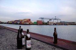 Das Tusker Bier erhalten Sie auch in Flaschenform.