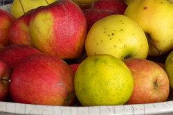 Äpfel - in Ringe schneiden, trocknen und genießen