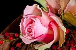 Blumen gehören zu einem romantischen Frühstück einfach dazu.