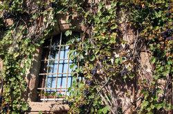 Fenstergitter dienen am Französischen Balkon der Sicherheit.