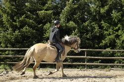 Pony- und Reiterspiele bringen Spaß.