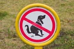Das Schild hilft nicht weiter, denn den Hund interessiert es nicht.