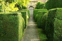 Für einen ordentlichen Garten ist ein Häcksler nötig.