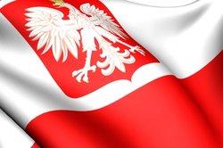 Das polnische Wappen auf der polnischen Flagge