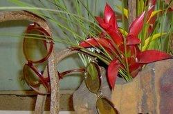 Arrangements mit japanischer Blumenkunst selber gestalten