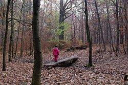 Wanderwege in Chemnitz mit Kindern erkunden.