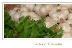 Knoblauch ist nicht nur ein Würz-Alleskönner, sondern hilft Ihnen auch beim Abnehmen.