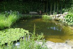 Fischhalter benötigen einen Teichfilter.
