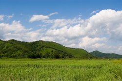 Preiswerte Grundstücke finden Sie in bevölkerungsarmen Landstrichen.
