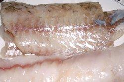 Rohen Fisch können Sie mit kaltem Wasser auftauen.