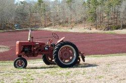 Erneuern Sie Motorteile an Ihrem Traktor.
