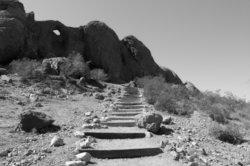 The Hills Have Eyes dreht sich um Mutanten in der Wüste.