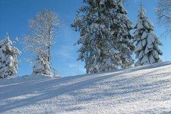 Schnee ist eine faszinierende Spielerei der Natur.