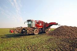 Subventionen sichern Bauern die Hälfte ihres Einkommens