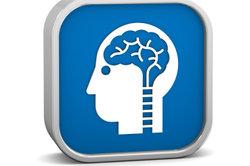 Das menschliche Gehirn ist nicht überholt.