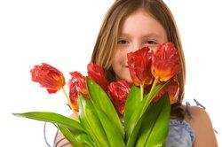 Rote Tulpen eignen sich zur Veranschaulichung der Farbe Rot für Kindergartenkinder.