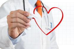 Der Blutkreislauf beginnt und endet im Herz.
