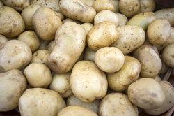 Kartoffeln enthalten hohe Anteile pflanzlicher Stärke.