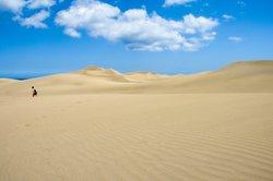 In einer Wüste wächst kaum etwas.