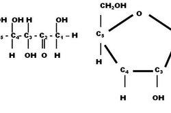 L-Fructose - links Fischer-Projektion (gedreht), rechts Haworth-Formel