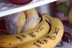 Der Kühlschrank ist eines unserer wichtigstens Haushaltsgeräte